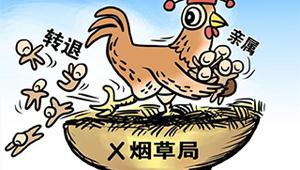 """浙江国企职工子女""""世袭""""变迁史"""