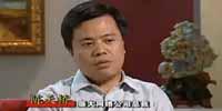 杨澜访谈录:对话陈天桥
