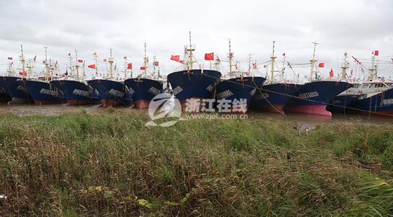温岭下起瓢泼大雨 568艘渔船进港避风