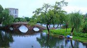 台风过后宁波月湖美丽依旧