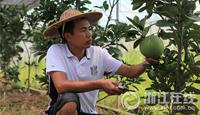 台州现代农民汪恩锋:心中有梦敢于创业
