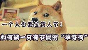 """单身狗的情人""""劫""""怎样才能不孤单"""