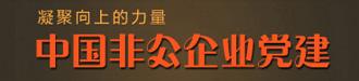 中国非公企业党建