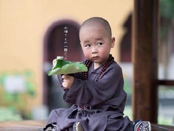 """桐乡最萌""""小和尚"""" 萌到爆棚"""