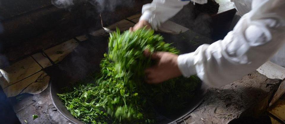 探访四川蒙顶山下最后的纯手工制茶坊(组图)