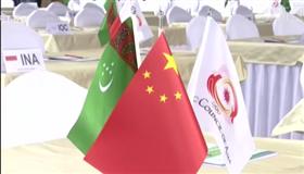 杭州代表团抵达土库曼斯坦 为申办亚运做最后准备