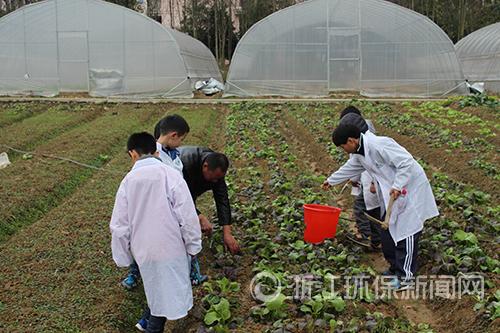 走进现代生态农业 环保小卫士体会粮食的来之不易