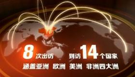 【年终特稿】变革世界 中国担当