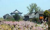 南湖凤桥镇