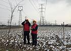 嘉兴供电公司:加班巡视 确保电网可靠运行
