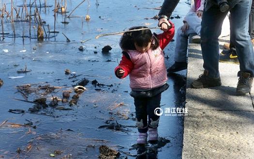 """""""速冻""""的杭州西湖美翻游客 冒险站冰面不可取"""