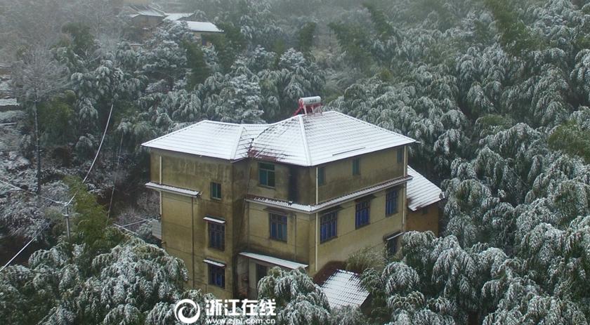 下雪啦!安吉三月飘春雪