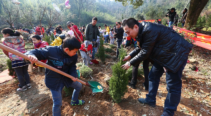 杭州亲子植树节 种下家庭孝心树