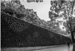 江东新河路上的花墙