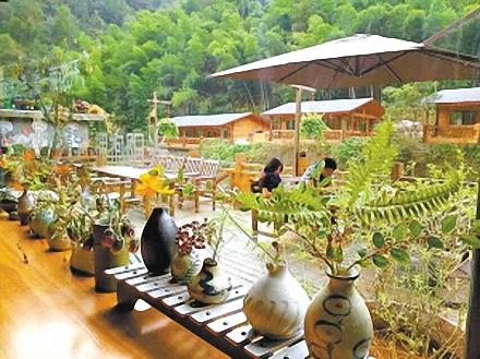绿色发展的路越走越宽 余姚四明山老区农民增收记 - 崇仁书院 - 仁溪書院 Renxi Academy