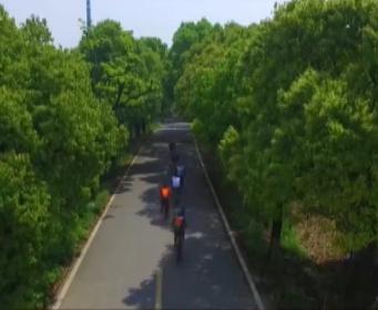 嘉兴翁金线:百年公路换新颜