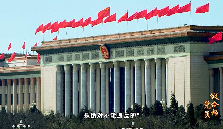 【做合格党员】第三讲:坚决维护党中央权威