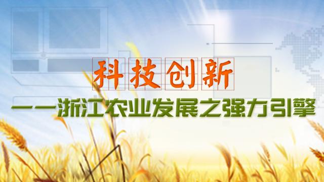 【科技能见度】第24期:科技创新——浙江农业发展之强力引擎