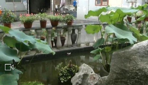 杭州一市民坚持十年 为小区修出一座花园