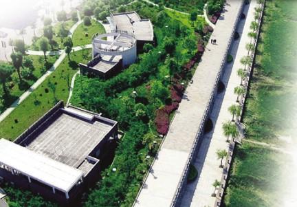 上虞滨江体育公园每日人流量达数万