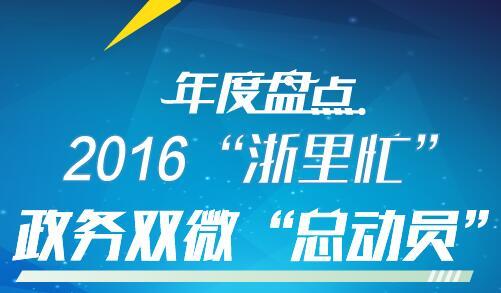 """2016""""浙里忙"""" 政务双微""""总动员"""""""
