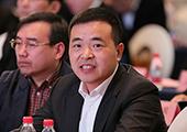 融创中国执行总裁兼融创东南区域公司总裁 王鹏