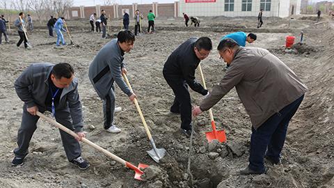 省援疆指挥部开展义务植树活动