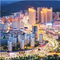 泰顺县之茶景点4