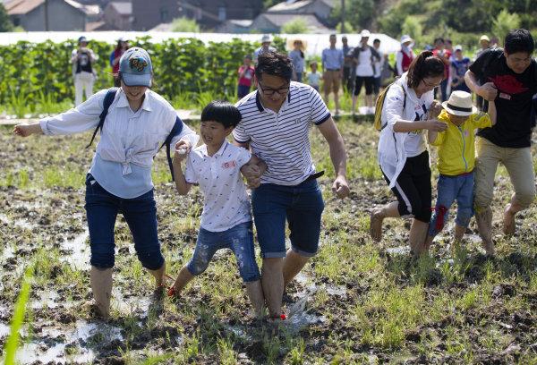 宁波:学农耕 迎端午