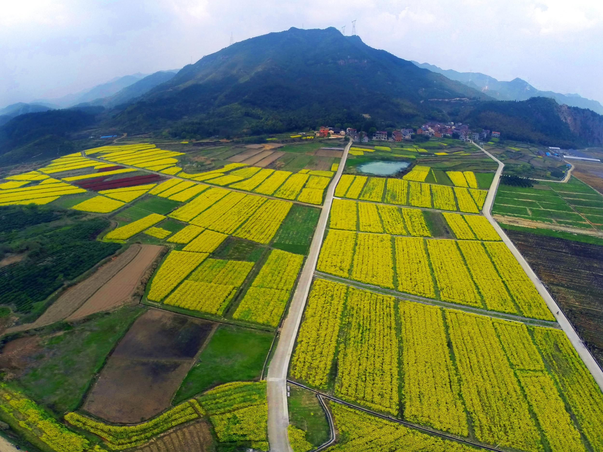 水清城净经济美  檀溪镇众志成城谋绿色发展