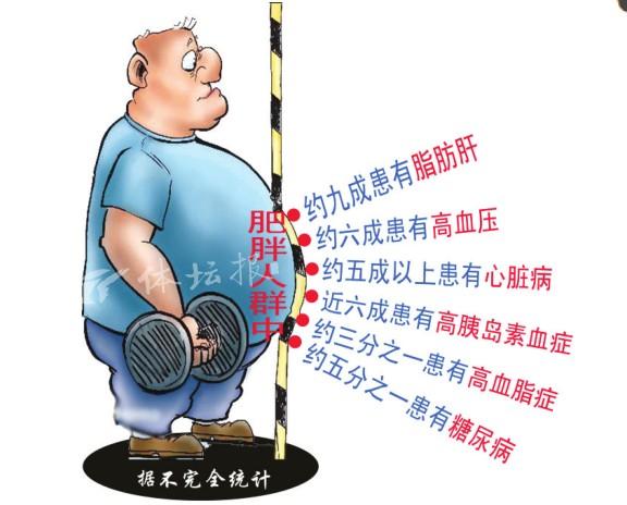 瘦子别被外表给忽悠了 体重正常不代表没有肥胖图片