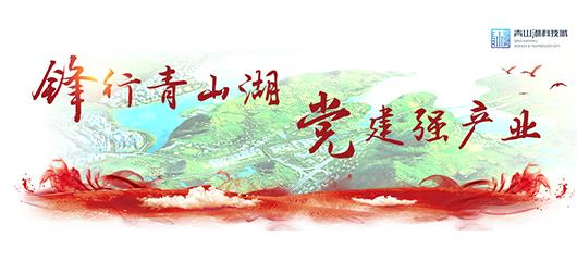 专栏:锋行青山湖 党建强产业