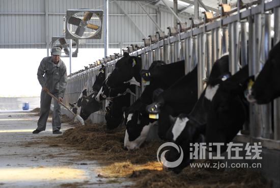 """老底子品牌的""""新视野"""" 揭开宁波牛奶集团蓬勃发展奥秘"""