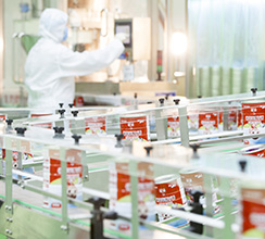 高标准化生产流水线