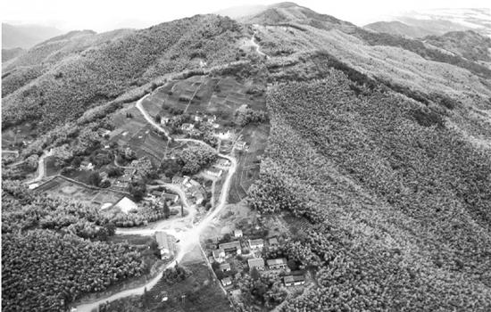 村民从集体逃离到纷纷回归 富阳小山村的振兴之路