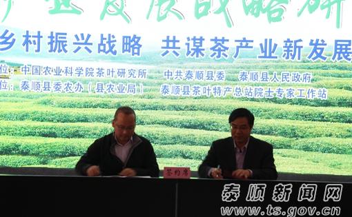 温州泰顺县召开茶产业发展战略研讨会 共谋茶叶