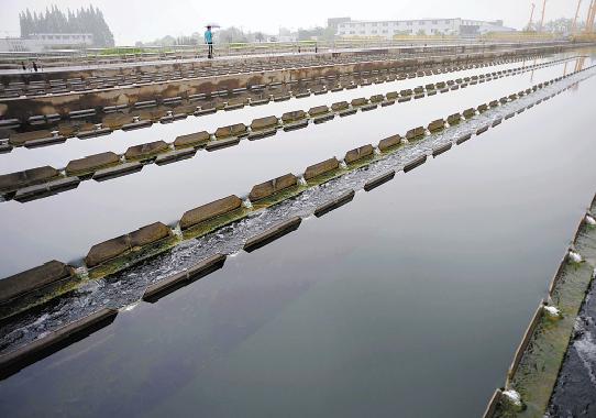 好消息!杭州主城区近半市民能用上水质更好的自来水