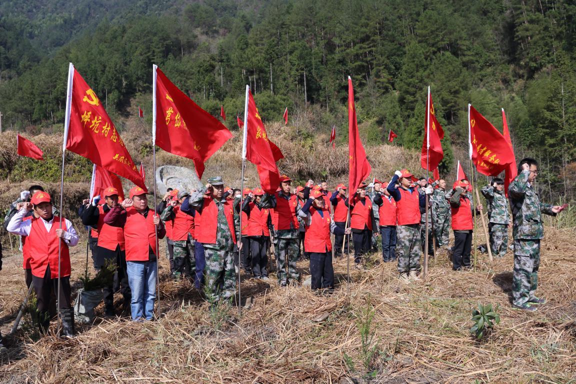 """景宁254个村级党组织种下10万多株""""乡村振兴树"""""""