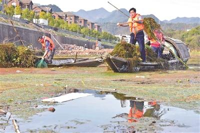 党员志愿者 护水在行动