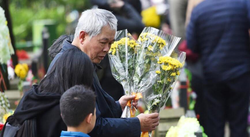 杭州:低碳清明节 鲜花祭故人