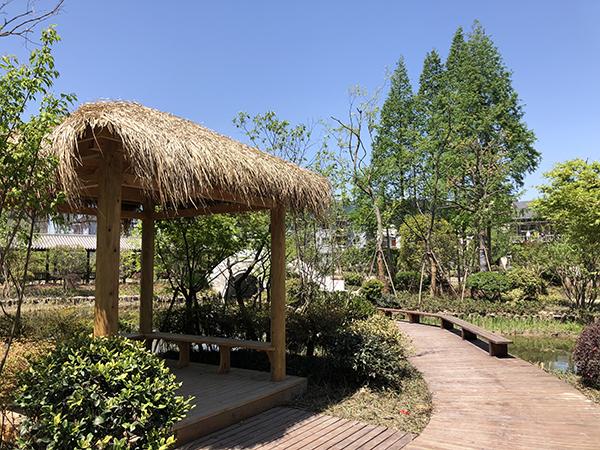 美如湿地 | 双浦镇兰溪口村文化公园亮相