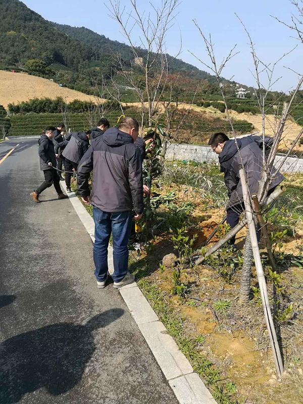 转塘街道巾帼家庭志愿者植树节参与绿化造林热情高