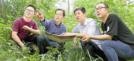 桐庐的村庄来了工作队 入驻14个乡镇(街道)助力乡村振兴