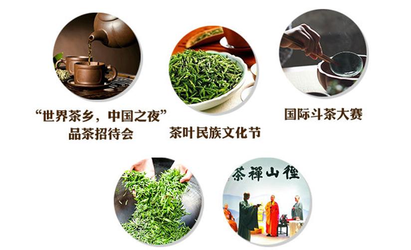 茶友们注意!第二届中国国际茶叶博览会要开啦