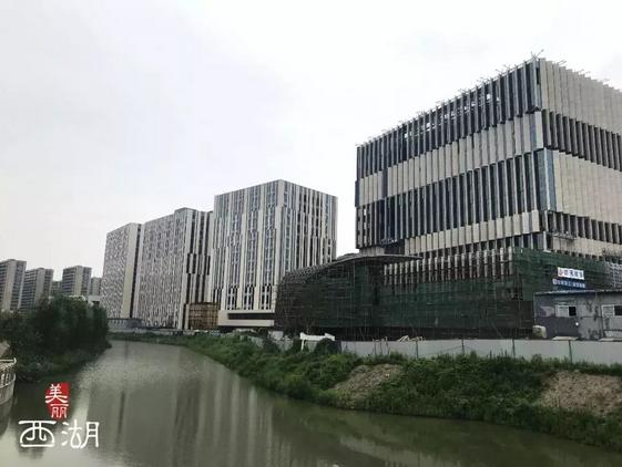 """全省唯一!中国(浙江)影视产业国际合作区获得""""国家级""""认定!"""