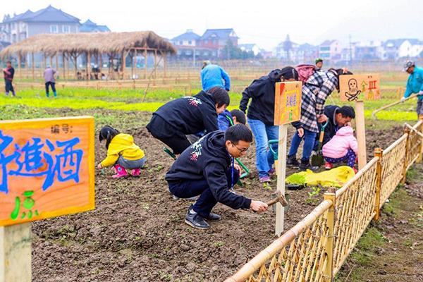 """菜园美成""""花园""""双浦镇今年要创建四个美丽农业示范点"""