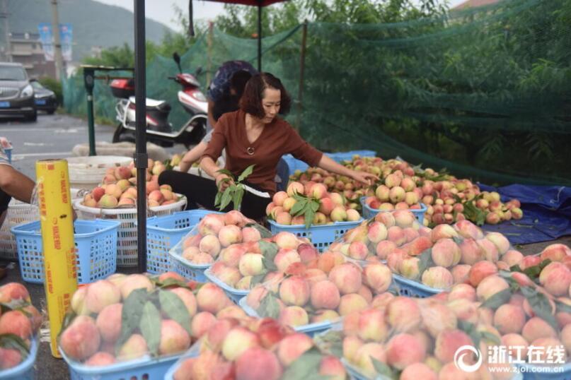 金华:桃农增收致富